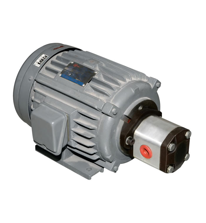 Ac/DC Electrical Pump Motor